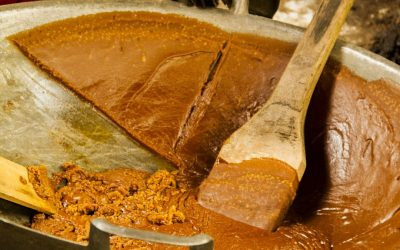 Organic coconut sugar – the best and most sustainable sweetener